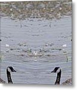 Canadian Goose Symmetry Metal Print