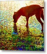 Canelo Drinking Water By The Lake Metal Print