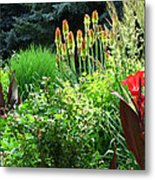 Canna Lily Garden Metal Print by Gretchen Wrede