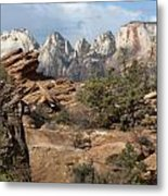 Canyon Trail Overlook Metal Print