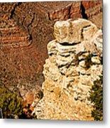 Canyon View V Metal Print