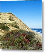 Cape Cod Dune Cliff Metal Print