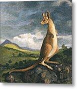 Captain Cook: Kangaroo, 1773 Metal Print