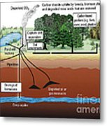 Carbon Dioxide Sequestration Metal Print by ORNL/Science Source