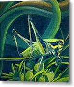 Card Of Mister Grasshopper Metal Print
