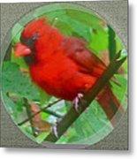 Cardinal Rings Metal Print