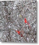 Cardinals In The Snow Metal Print