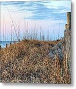 Carolina Pastels Metal Print by JC Findley