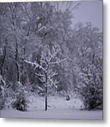 Carolina Snowfall Metal Print