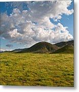 Carrizo Plain National Monument Metal Print