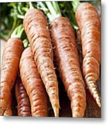 Carrots Metal Print by Elena Elisseeva
