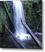 Rainforest Waterfall Cascades Metal Print