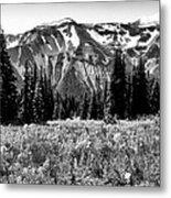 Cascade Mountain Range Metal Print