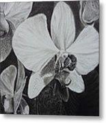 Cascade Of Orchidds Metal Print by Estephy Sabin Figueroa