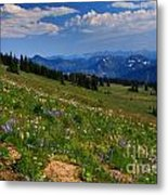Cascades And Wildflowers Metal Print