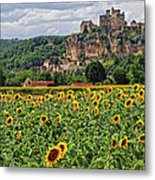 Castle In Dordogne Region France Metal Print