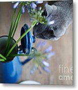 Cat And Flowers Metal Print