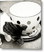 Cat And Mouse Coffee Metal Print