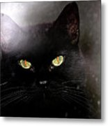 Cat Behind A Rain Spattered Window Metal Print