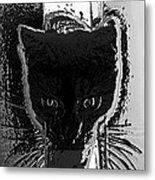 Cat Coming In Metal Print