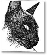 Cat Drawings 5 Metal Print
