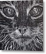 Cat Eyes Metal Print
