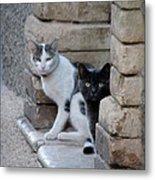 Cat Guardians Metal Print