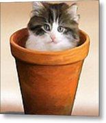 Cat In A Pot Metal Print