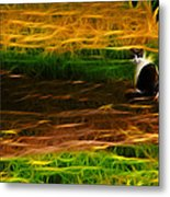 Cat In A Strange Place Metal Print
