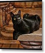 Cat On Pillar Metal Print