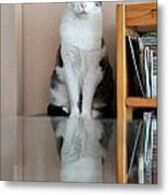 Cat Standing On Chair Metal Print