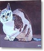 Cat With Brown Background Metal Print