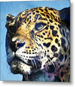 Cats Eyes - Leopard Metal Print