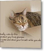 Cats Protecting You From Gnomes - Lily The Cat Metal Print