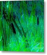 Cattails Metal Print