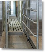 Cattle Foot Bath Walkway Metal Print