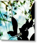 Caught Up In My Own Imagination Metal Print