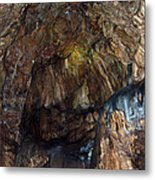 Cave01 Metal Print by Svetlana Sewell