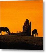 Celtic Horses In Sunset Metal Print