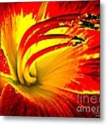 Centered In Pixy Dust Metal Print
