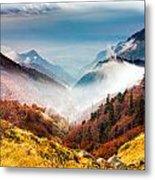 Central Balkan National Park Metal Print