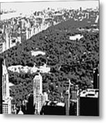 Central Park Bw3 Metal Print