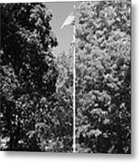 Central Park Flag In Black And White Metal Print