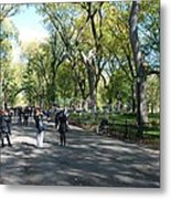 Central Park Mall Metal Print by Rob Hans