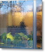 Central Park Reflections Metal Print