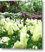 Central Park Tulips Metal Print