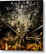 Changes Metal Print by Ellen Heaverlo