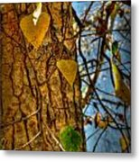 Changing Leaves And A Cottonwood Trunk Metal Print