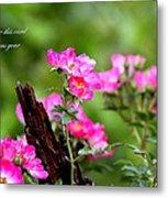 Cherokee Rose Card - Flower Metal Print
