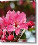 Cherry Blossom Greeting Card Blank With Decorations Metal Print